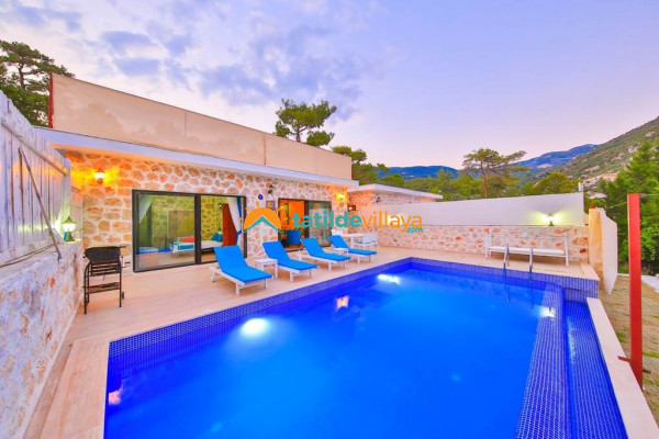 Villa Stone House 1