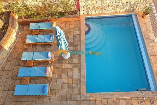 Villa Paradise Kaktüs